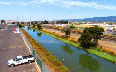 Damon Slough, Oakland Estuary