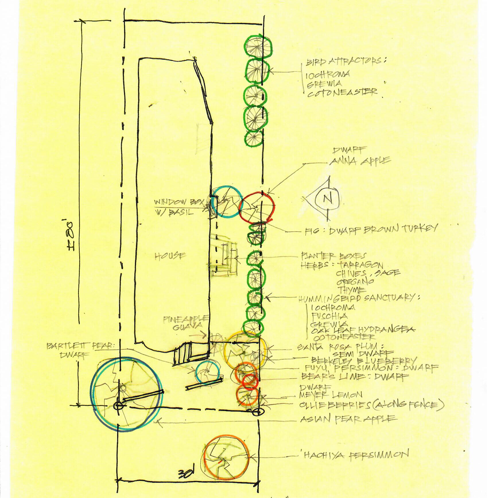 Map of driveway planting palette